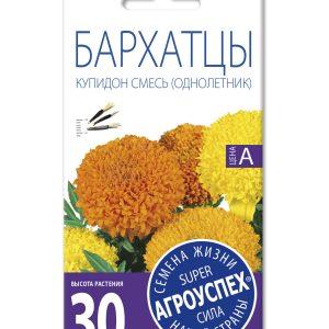Лц/бархатцы Купидон хризантемовидные О*0