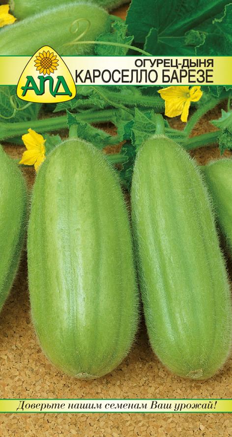 Семена Огурец-дыня Кароселло Барезе изображение