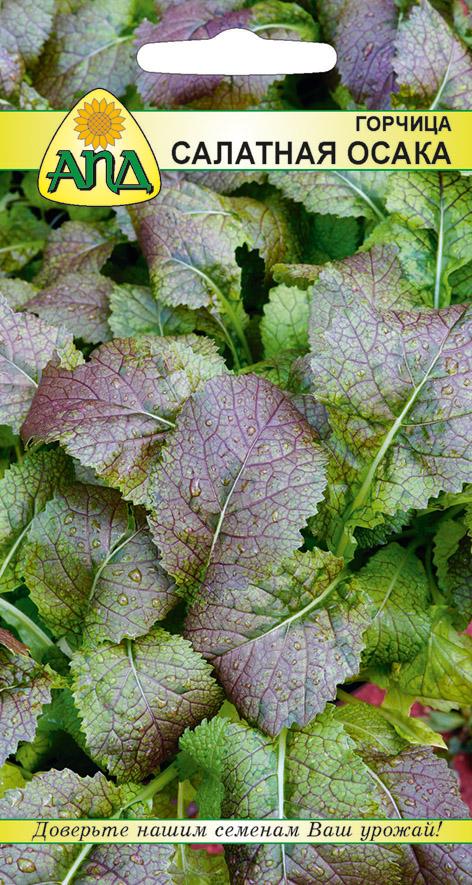 Семена Горчица салатная Осака изображение