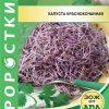 Семена Проростки капуста краснокочанная изображение