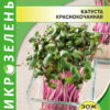 Семена Микрозелень Капуста краснокочанная изображение