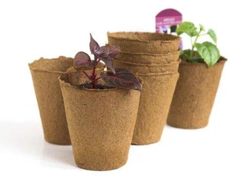 Торфяные горшочки для выращивания рассады 100*110 мм КРУГЛЫЕ/уп.150 изображение